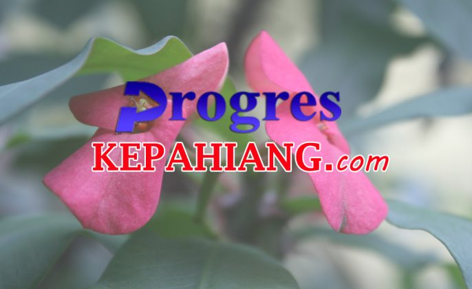 Progres Kepahiang