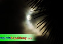 Bulan purnama daul palm