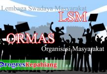 Ilustrasi lsm dan ormas