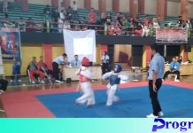 Taekwondo Open Tournament
