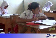 Pelajar SD