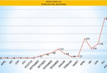 Data covid kepahiang per bulan